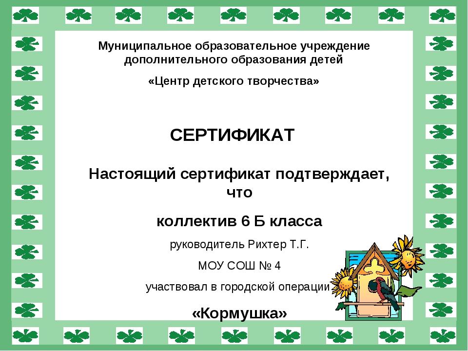 Муниципальное образовательное учреждение дополнительного образования детей «Ц...