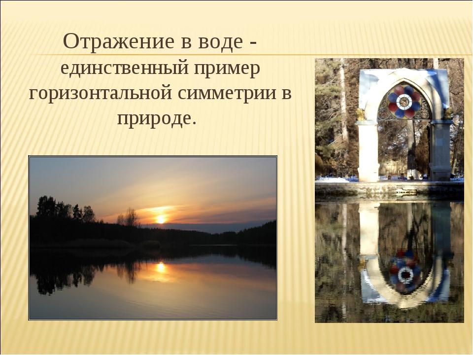 Отражение в воде - единственный пример горизонтальной симметрии в природе.