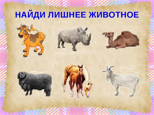 НАЙДИ ЛИШНЕЕ ЖИВОТНОЕ scul32.ucoz.ru