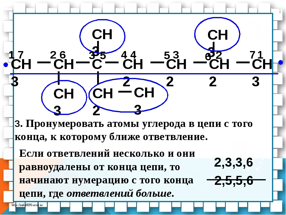 CH3 CH C CH2 CH2 CH3 CH3 CH3 CH2 CH3 CH3 CH2 7 2 3 1 6 5 4 1 7 2 3 6 5 4 2,5,...