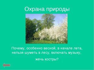 Охрана природы Почему, особенно весной, в начале лета, нельзя шуметь в лесу,
