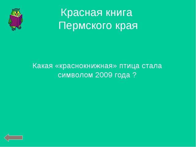 Какая «краснокнижная» птица стала символом 2009 года ? Красная книга Пермског...