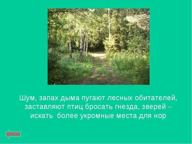Шум, запах дыма пугают лесных обитателей, заставляют птиц бросать гнезда, зве...