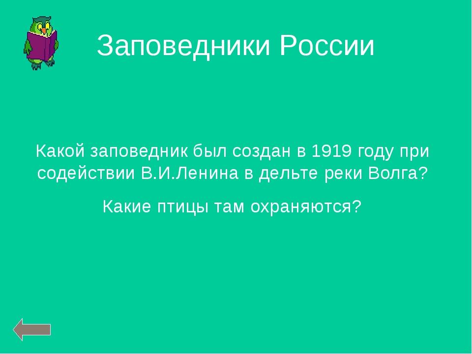 Какой заповедник был создан в 1919 году при содействии В.И.Ленина в дельте ре...