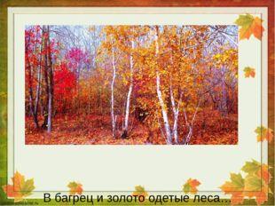 В багрец и золото одетые леса…