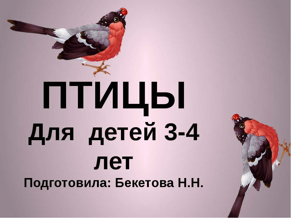 ПТИЦЫ Для детей 3-4 лет Подготовила: Бекетова Н.Н.