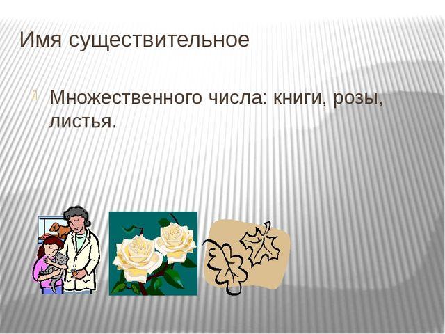 Имя существительное Множественного числа: книги, розы, листья.
