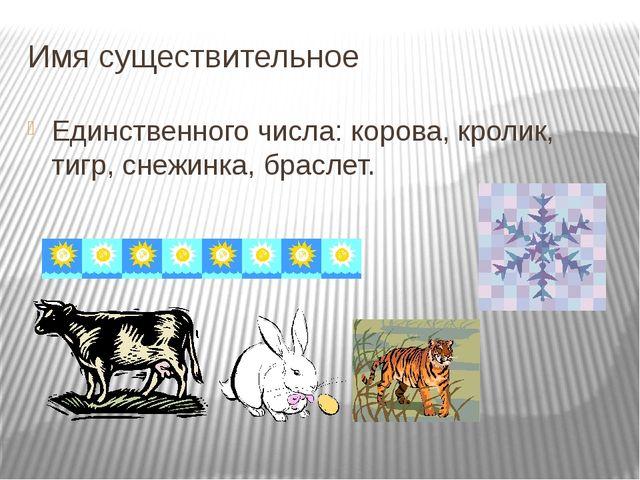 Имя существительное Единственного числа: корова, кролик, тигр, снежинка, брас...