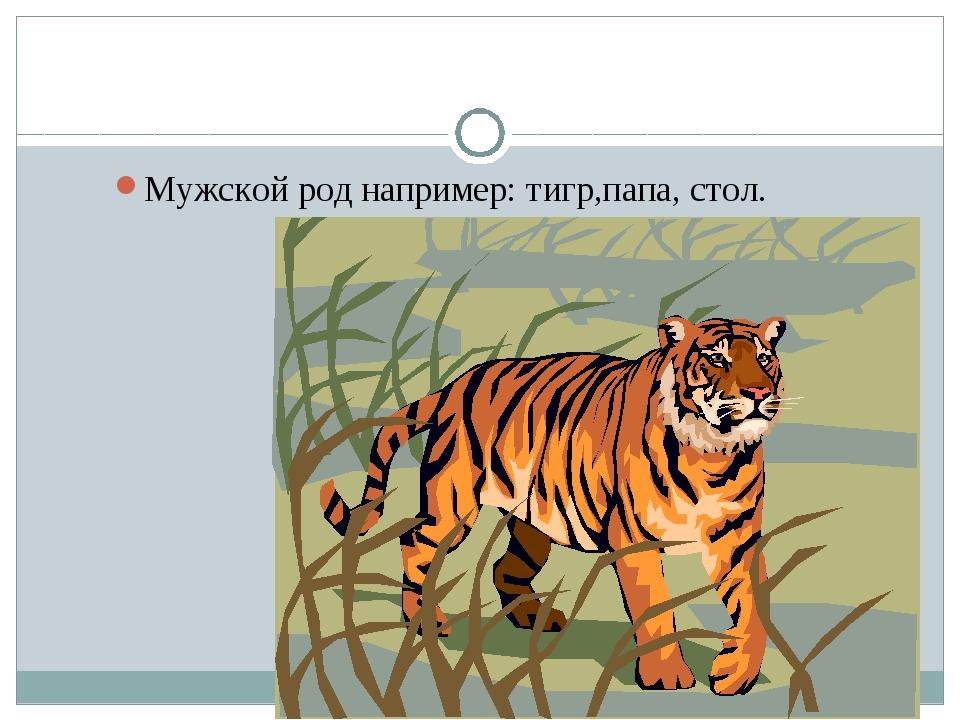 Род имён существительных. Мужской род например: тигр,папа, стол.
