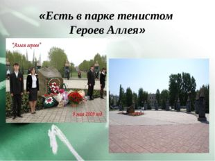 «Есть в парке тенистом Героев Аллея»