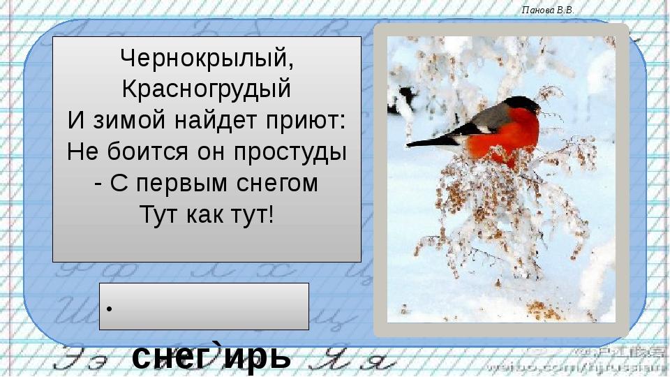Чернокрылый, Красногрудый И зимой найдет приют: Не боится он простуды - С пер...