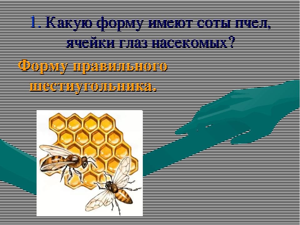 1. Какую форму имеют соты пчел, ячейки глаз насекомых? Форму правильного шест...