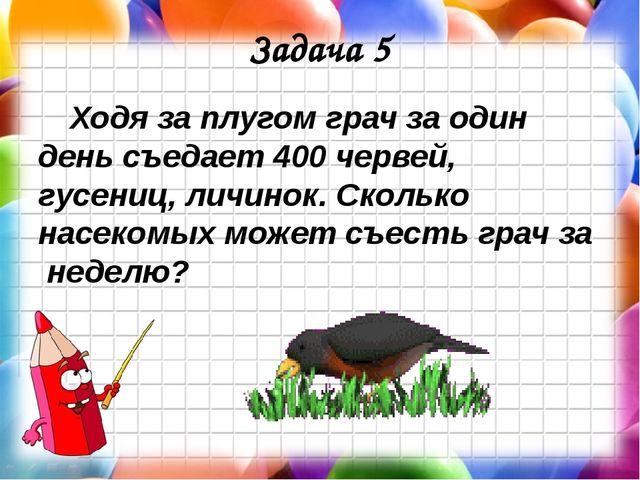 Задача 5 Ходя за плугом грач за один день съедает 400 червей, гусениц, личино...