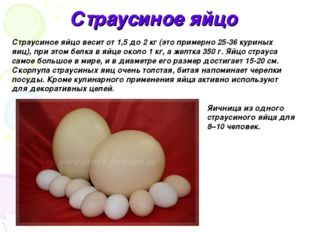Страусиное яйцо Яичница из одного страусиного яйца для 8–10 человек. Страусин