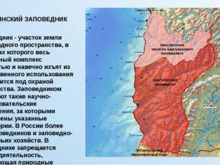 БАРГУЗИНСКИЙ ЗАПОВЕДНИК Заповедник- участок земли либо водного пространства,