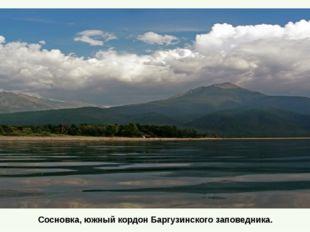 Сосновка, южный кордон Баргузинского заповедника.