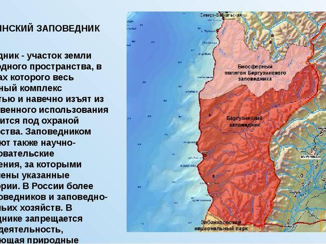 БАРГУЗИНСКИЙ ЗАПОВЕДНИК Заповедник- участок земли либо водного пространства,...