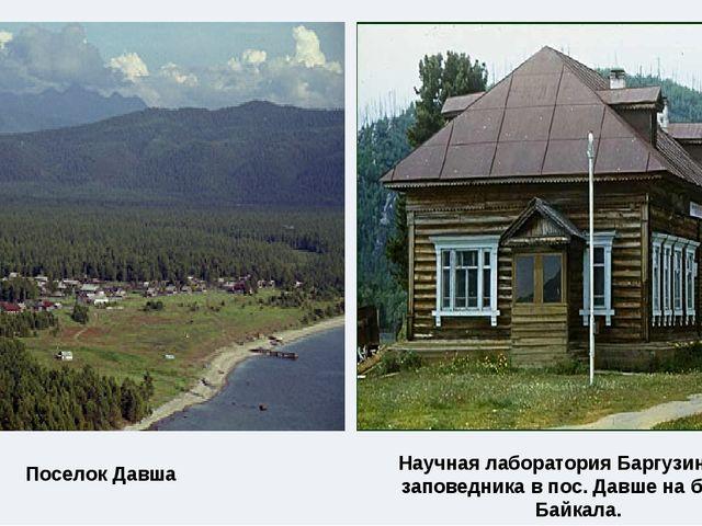 Поселок Давша Научная лаборатория Баргузинского заповедника в пос. Давше на б...