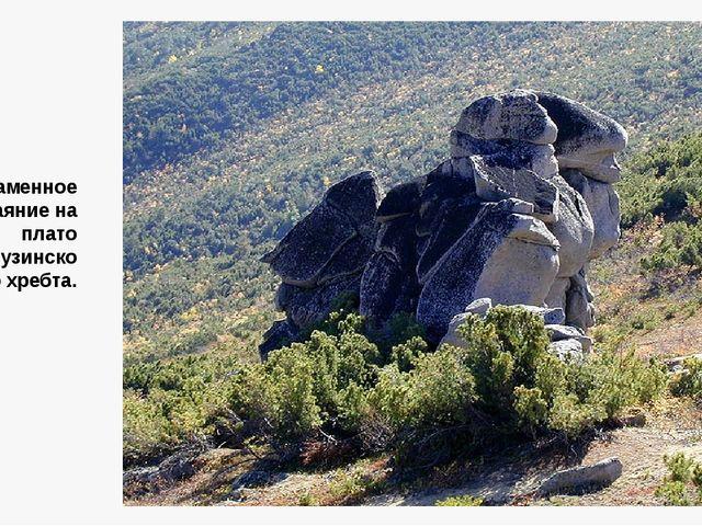 Каменное изваяние на плато Баргузинского хребта.