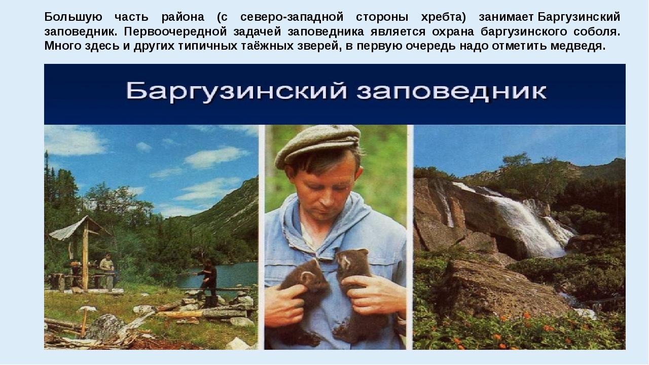 Большую часть района (с северо-западной стороны хребта) занимаетБаргузинский...