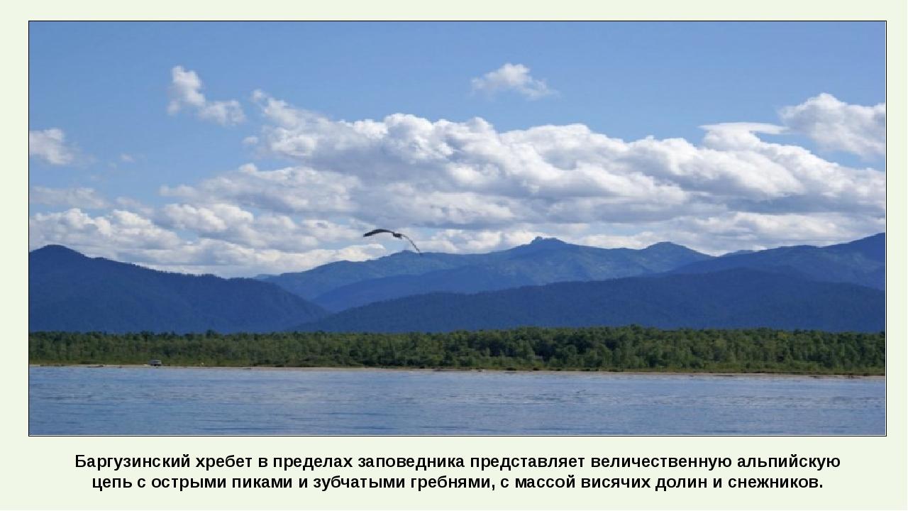 Баргузинский хребет в пределах заповедника представляет величественную альпий...