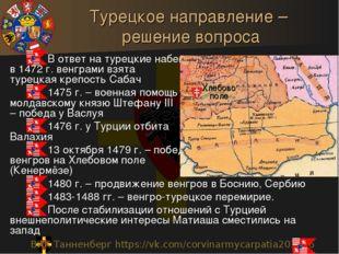 Турецкое направление – решение вопроса В ответ на турецкие набеги в 1472 г. в