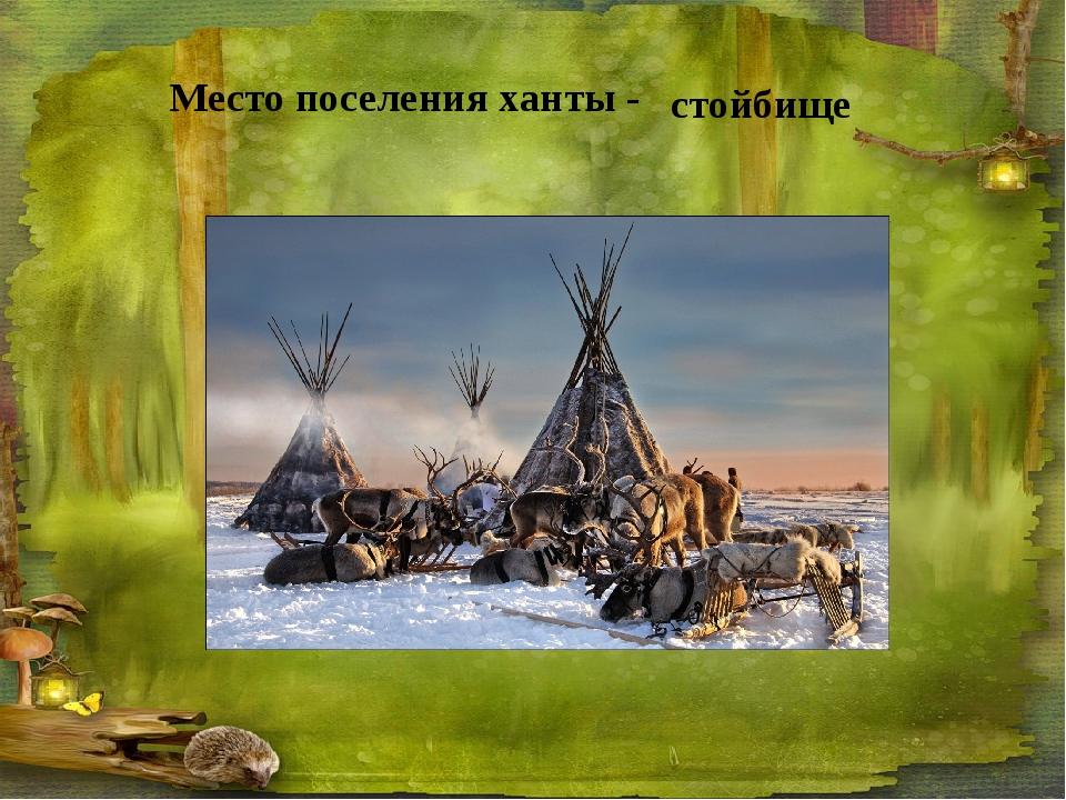 Место поселения ханты - стойбище