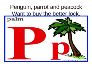 Penguin, parrot and peacock Want to buy the better lock.