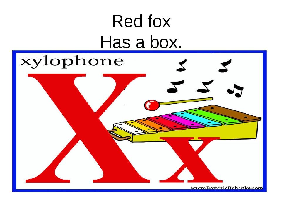 Red fox Has a box.