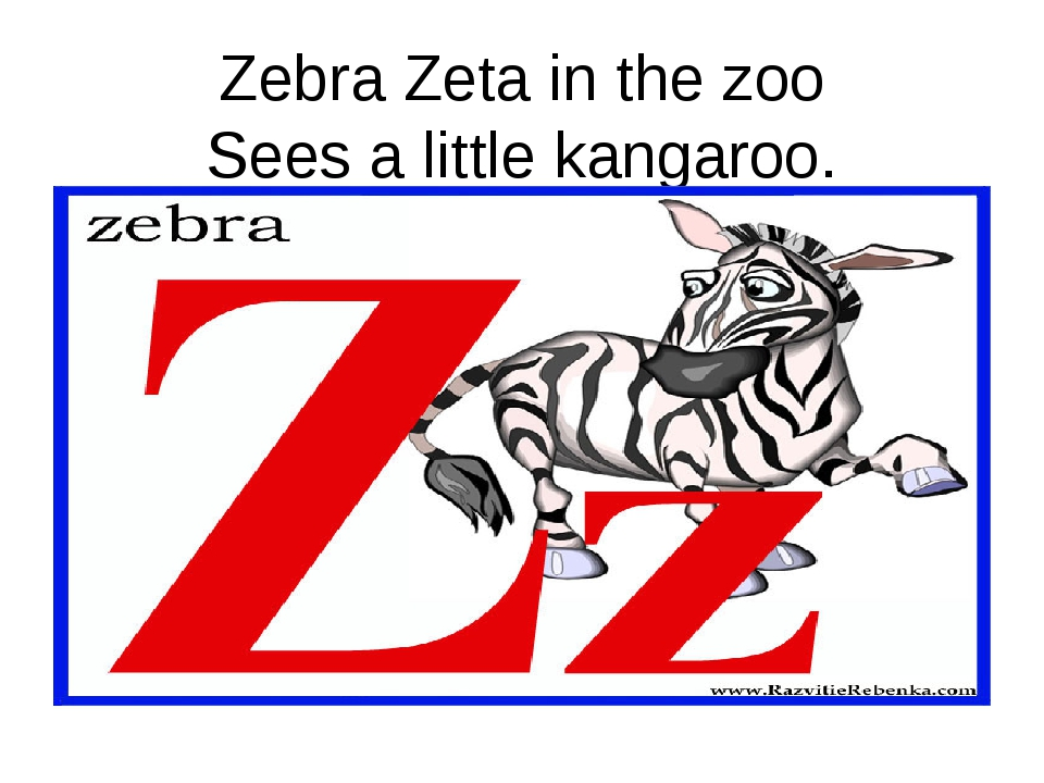 Zebra Zeta in the zoo Sees a little kangaroo.
