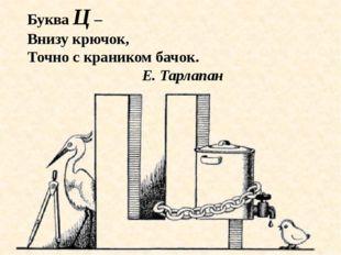 Буква Ц – Внизу крючок, Точно с краником бачок. Е. Тарлапан
