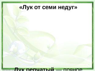 «Лук от семи недуг»   Лук репчатый— пряное культурное растение, относяще