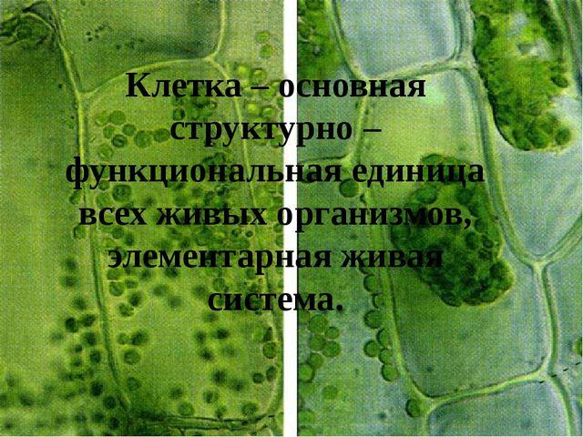 Клетка – основная структурно – функциональная единица всех живых организмов,...