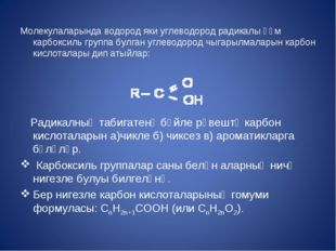 Молекулаларында водород яки углеводород радикалы һәм карбоксиль группа булга