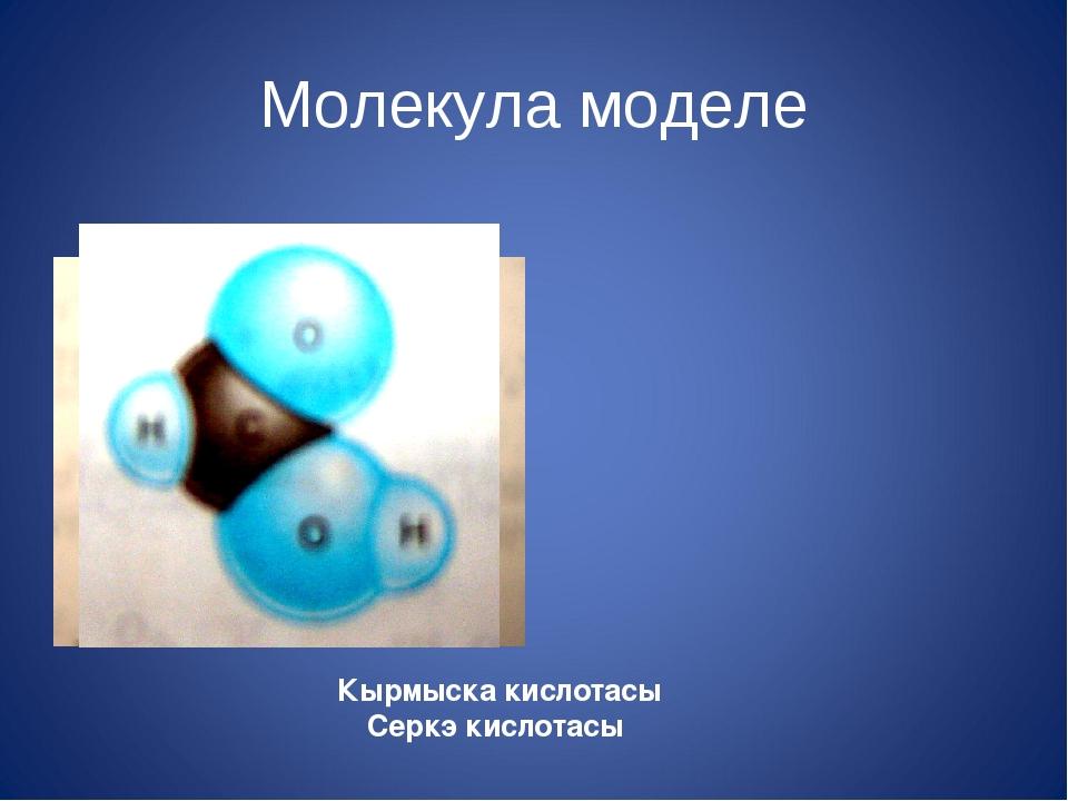 Молекула моделе Кырмыска кислотасы Серкэ кислотасы