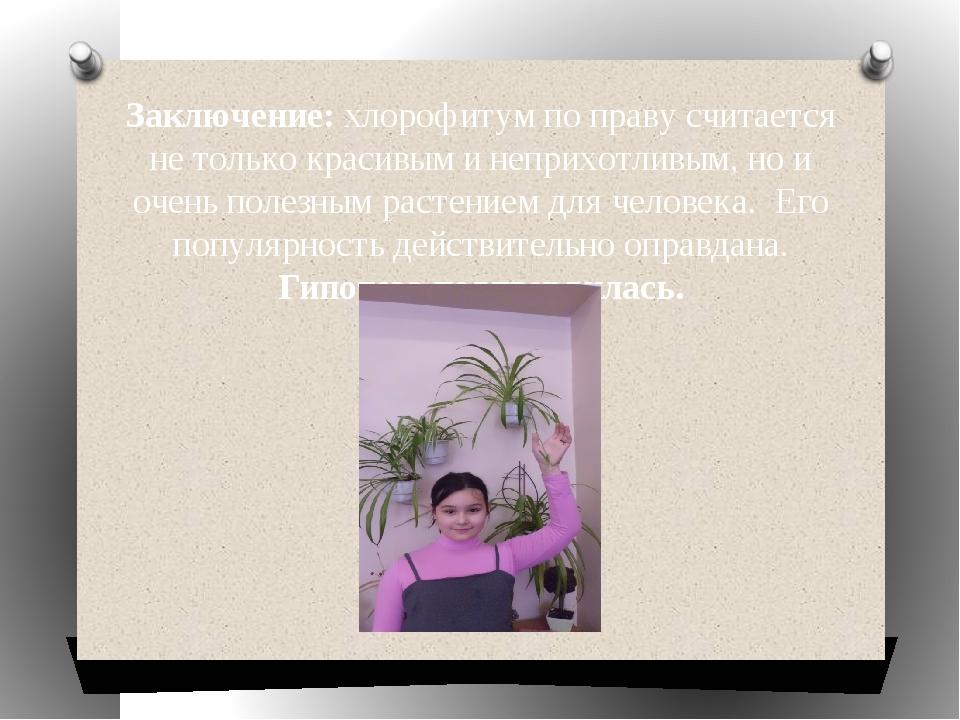 Заключение: хлорофитум по праву считается не только красивым и неприхотливым,...