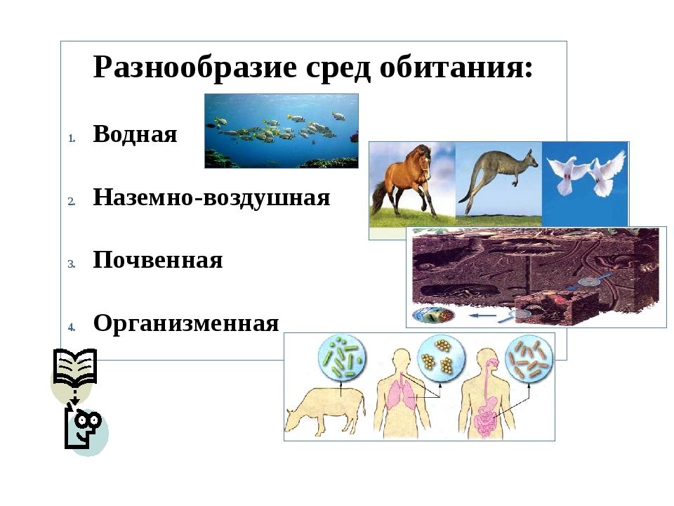 Разнообразие сред обитания: Водная Наземно-воздушная Почвенная Организменная