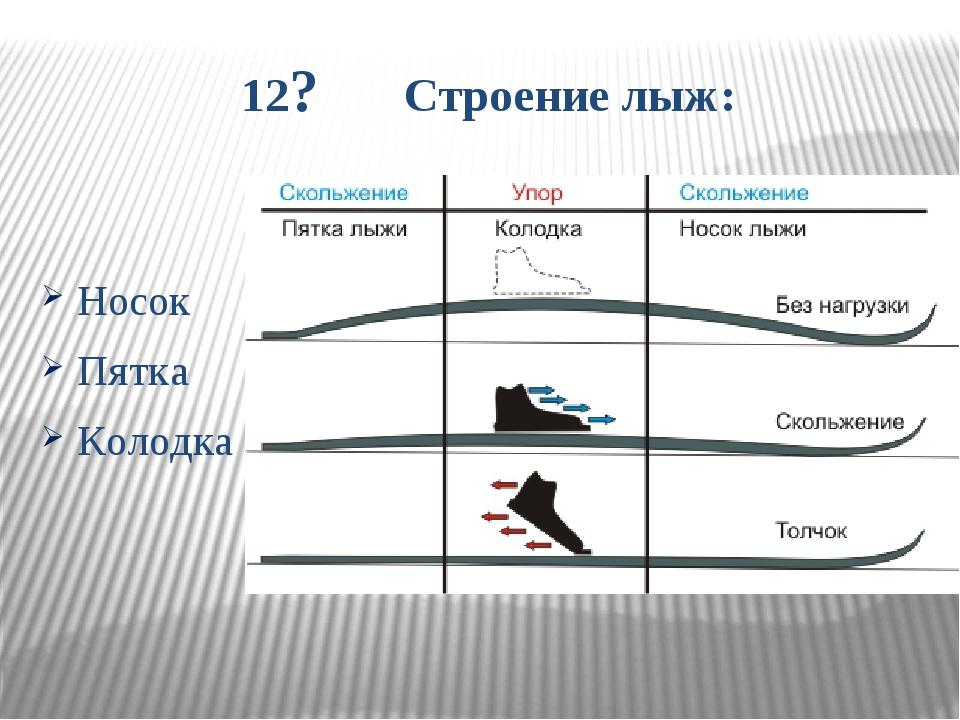12? Строение лыж: Носок Пятка Колодка