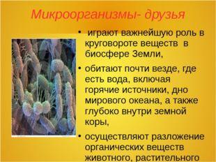 Микроорганизмы- друзья играют важнейшую роль в круговороте веществ в биосфере