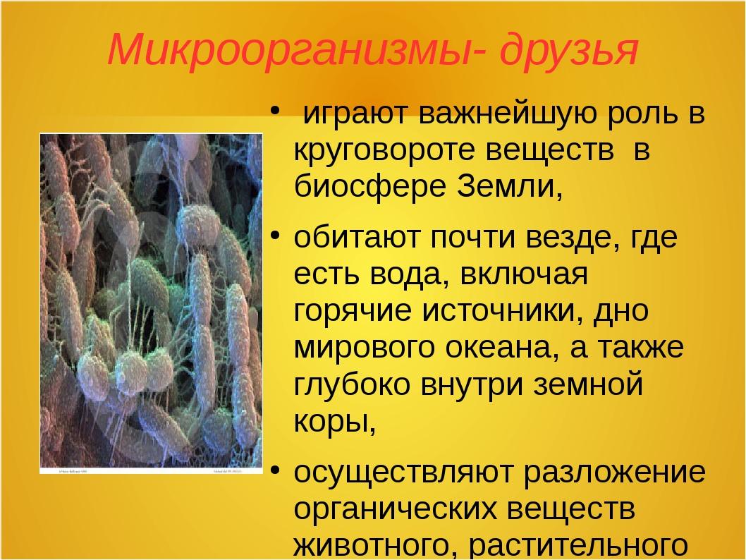 Микроорганизмы- друзья играют важнейшую роль в круговороте веществ в биосфере...