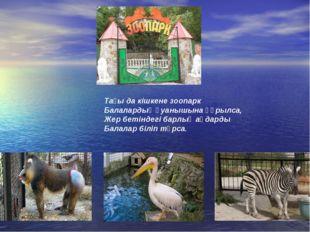 Тағы да кішкене зоопарк Балалардың қуанышына құрылса, Жер бетіндегі барлық аң
