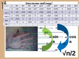 Заполните таблицу: 0 1 2 3 4 0° 30° 45° 60° 90° sin a cos a 0° 90° 30° 45° 60