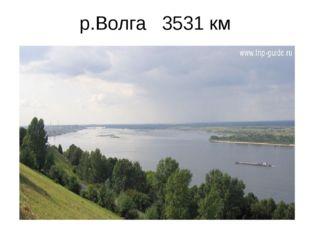 р.Волга 3531 км