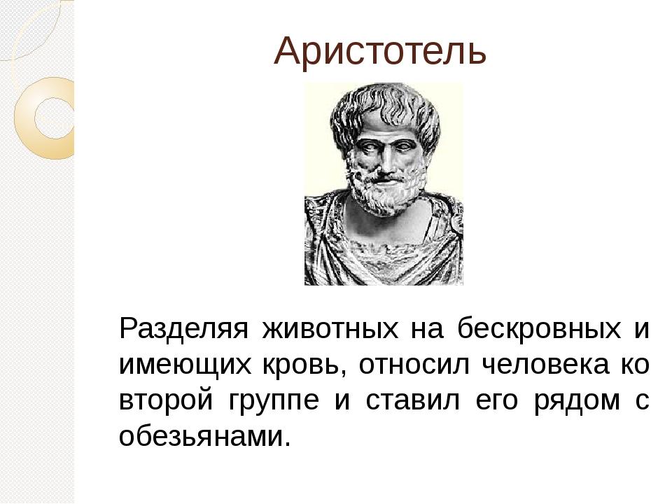 Аристотель Разделяя животных на бескровных и имеющих кровь, относил человека...