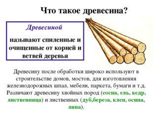 Что такое древесина? Древесиной называют спиленные и очищенные от корней и ве