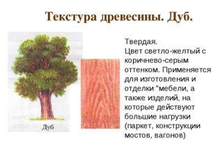 Текстура древесины. Дуб. Твердая. Цвет светло-желтый с коричнево-серым отте