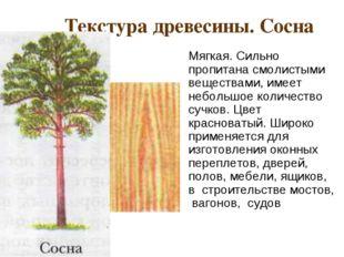 Текстура древесины. Сосна Мягкая. Сильно пропитана смолистыми веществами, им