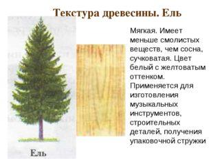Текстура древесины. Ель Мягкая. Имеет меньше смолистых веществ, чем сосна, с