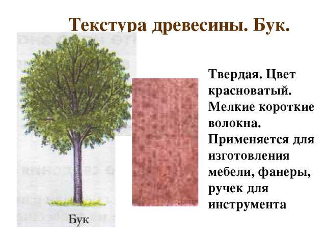 Текстура древесины. Бук. Твердая. Цвет красноватый. Мелкие короткие волокна....