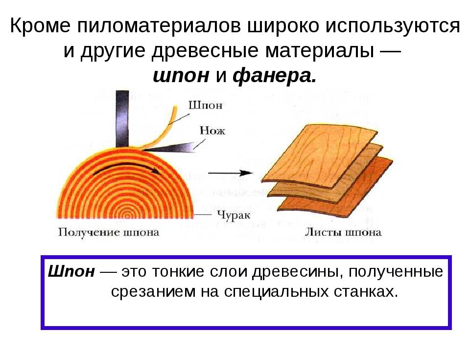 Кроме пиломатериалов широко используются и другие древесные материалы — шпон...